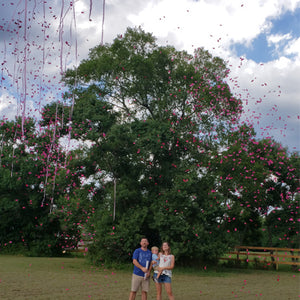 "18"" Pink Gender Reveal Streamer & Confetti Cannons"