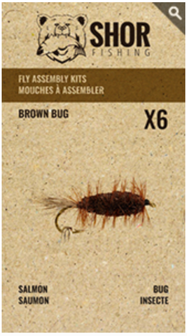 MOUCHE À ASSEMBLER (BROWN BUG)