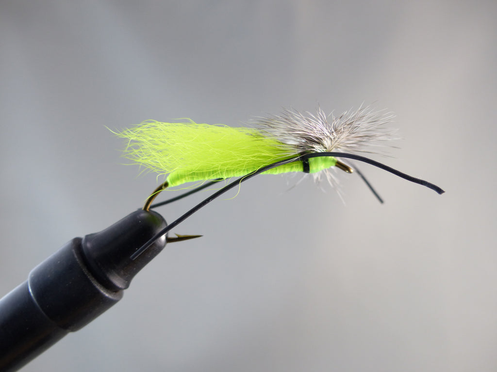 TROTTINETTE LIME AILE CHARTREUSE