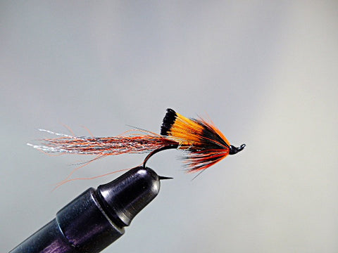 ALLY'S COPPER SHRIMP