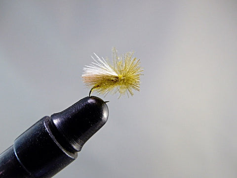 CADDIS CDC OLIVE