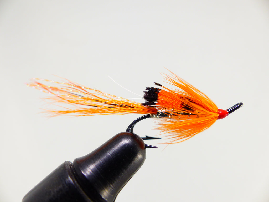 Black Boar orange