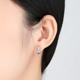 Round Solitaire Crystals Dangle Earrings - 2 Colours!