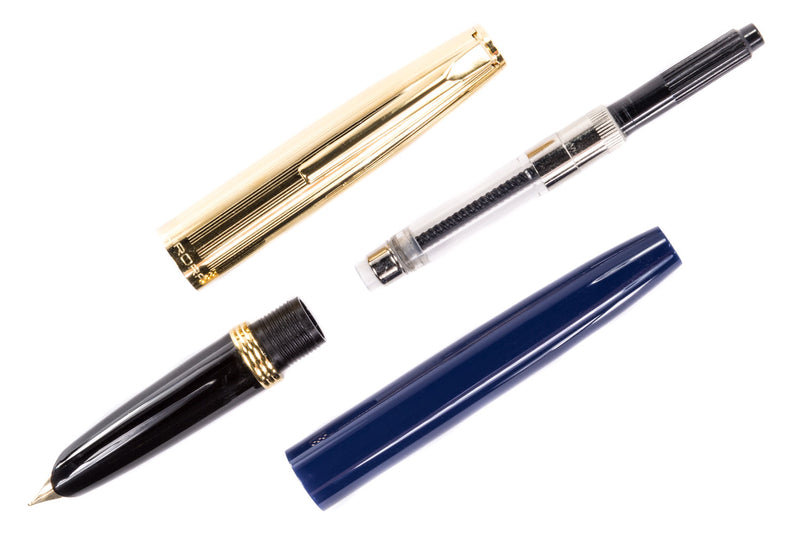 Aurora Duo Cart Fountain Pen - Blue