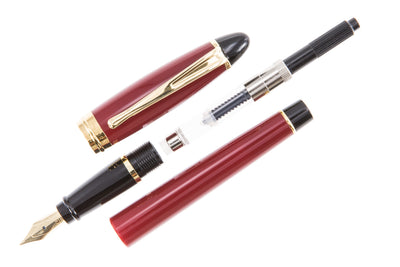Aurora Ipsilon Fountain Pen - Bordeaux