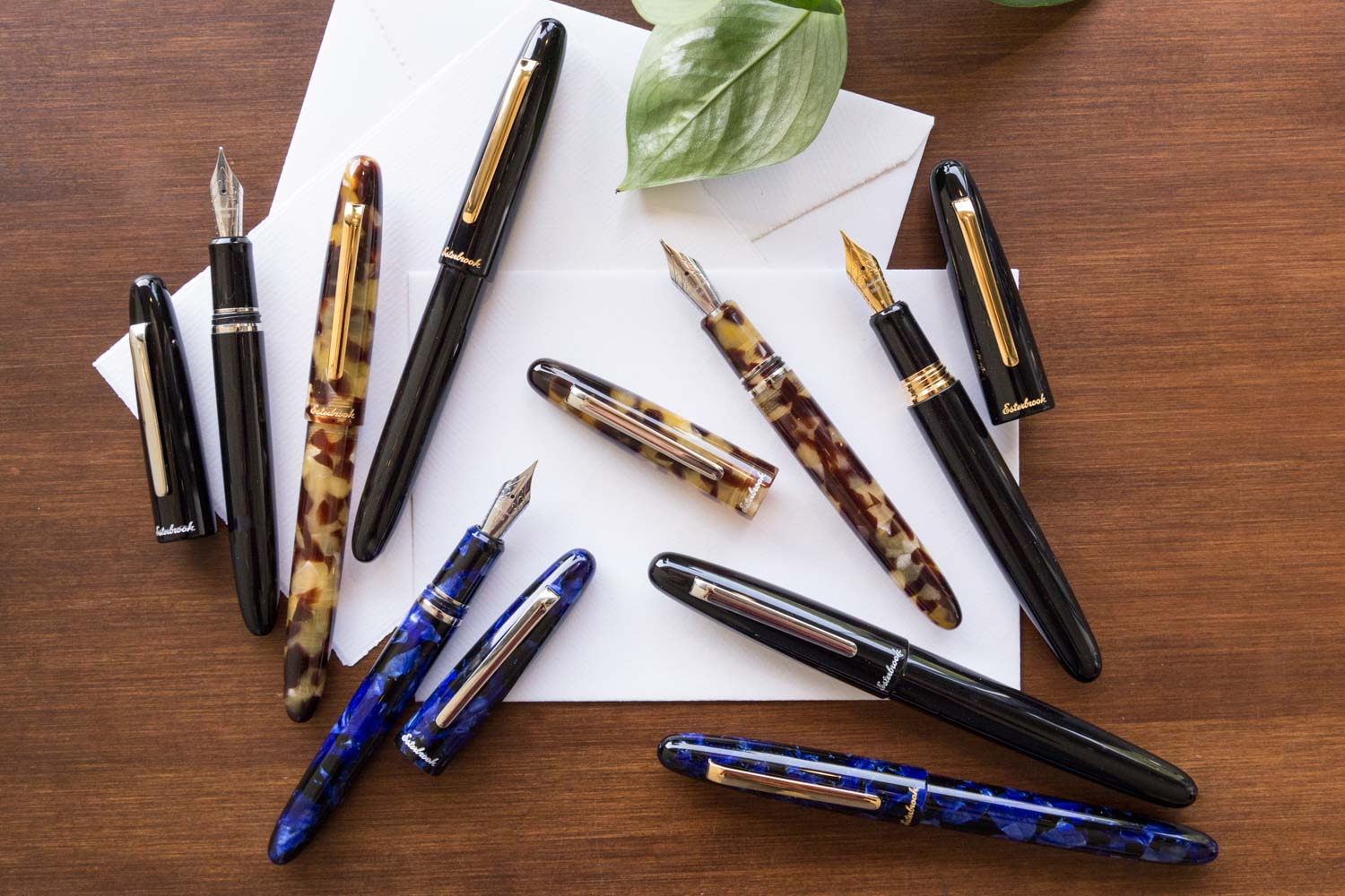 Esterbrook Estie Fountain Pen - Tortoise/Chrome