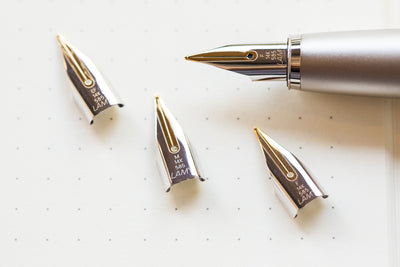 LAMY 14k Gold Nib - Two-Tone
