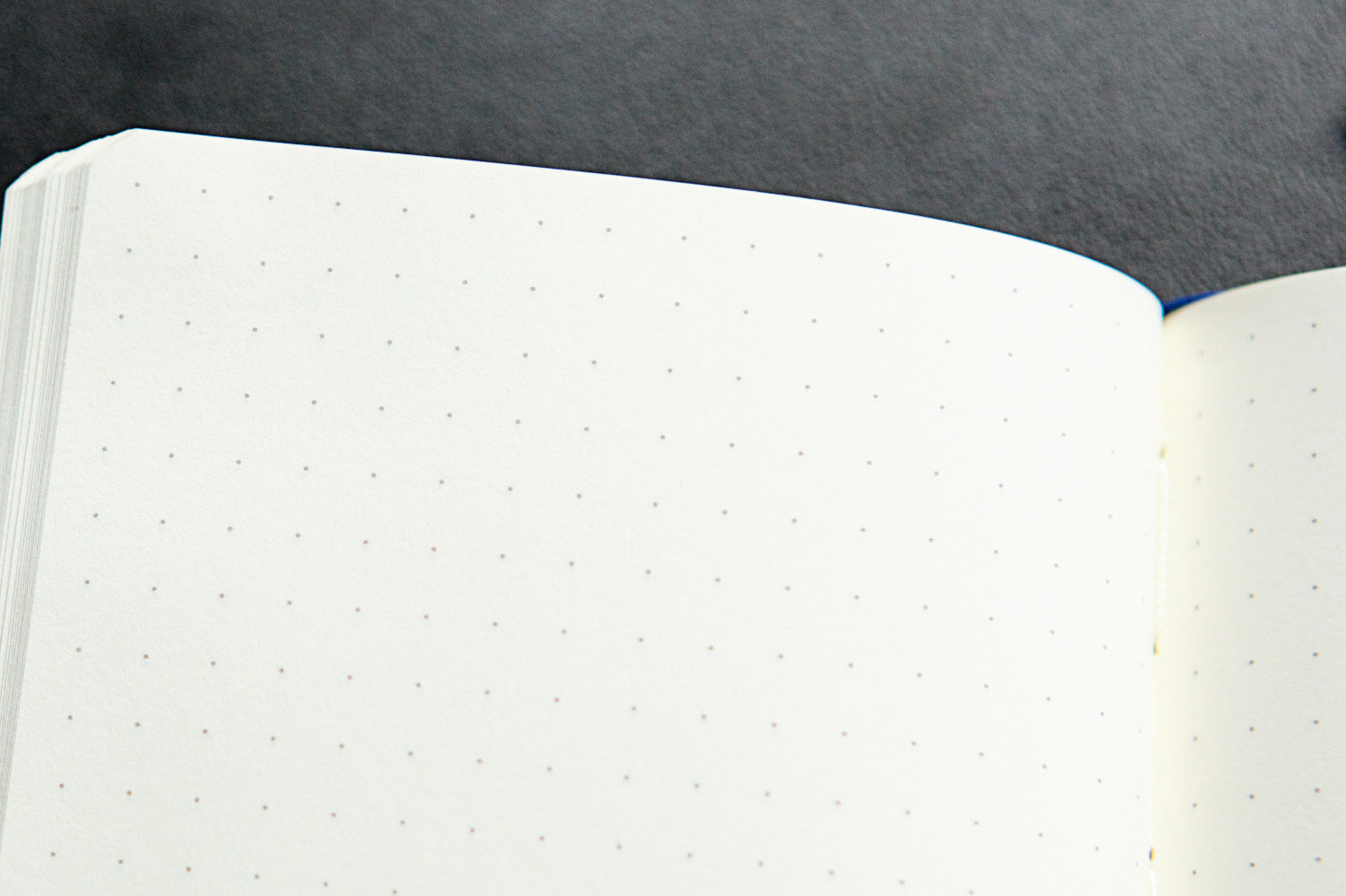 Leuchtturm1917 Medium A5 Notebook - Red, Dot Grid