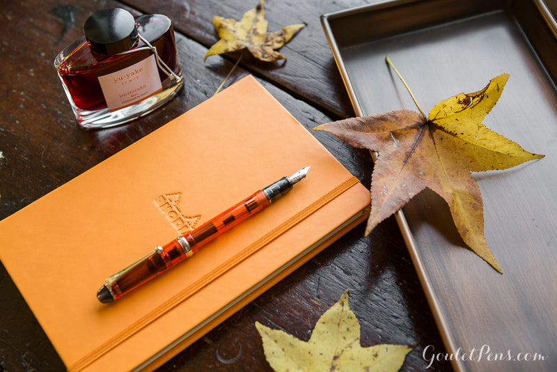 Rhodia Medium Webnotebook - Orange, Dot Grid (5.51 x 8.27)