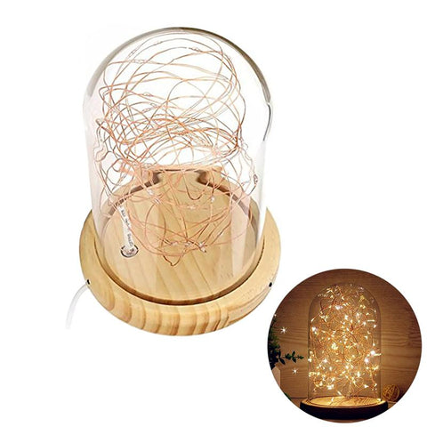 LED String Lights in Glass Dome
