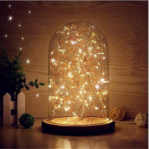 LED String Lights in Glass Dome - TrendyGiftIdea