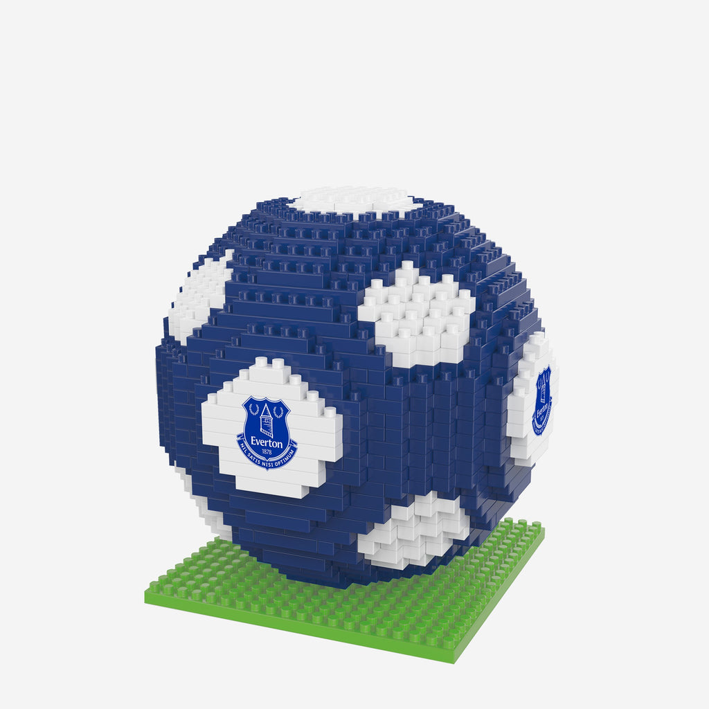 Everton FC BRXLZ Football FOCO - FOCO.com | UK & IRE