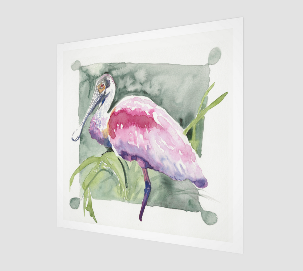 Roseate Spoonbill Archival Print