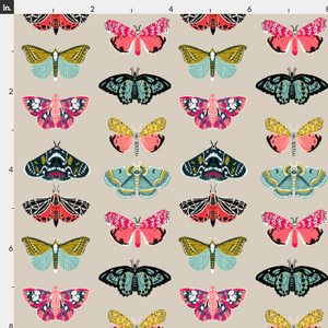 Moths and Butterflies Wallpaper