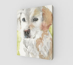 Sammy Gallery Wrapped Canvas