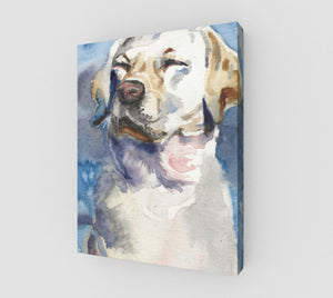 Dog Dreams 11x14  gallery wrapped canvas