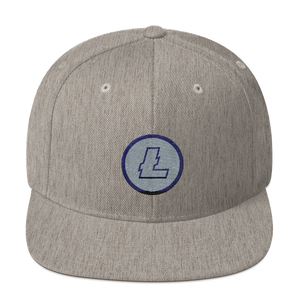 New Litecoin Snapback Hat