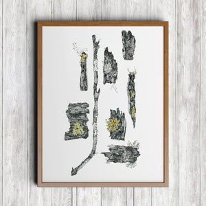 Powdered Sunshine Lichen Art Print