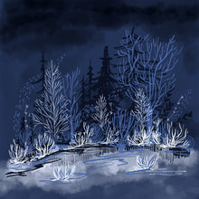 Dark Winter Night