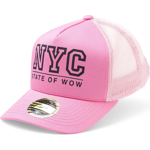 State Of Wow Šiltovka Toronto Youth Baseball Trucker Pink d7c91ee83645