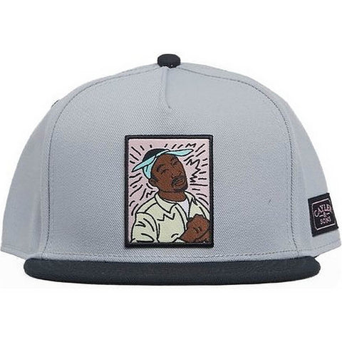Cayler & Sons White Label 2Pac Lines Snapback Grey/Mc