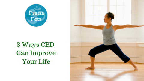 8 ways cbd can improve your life
