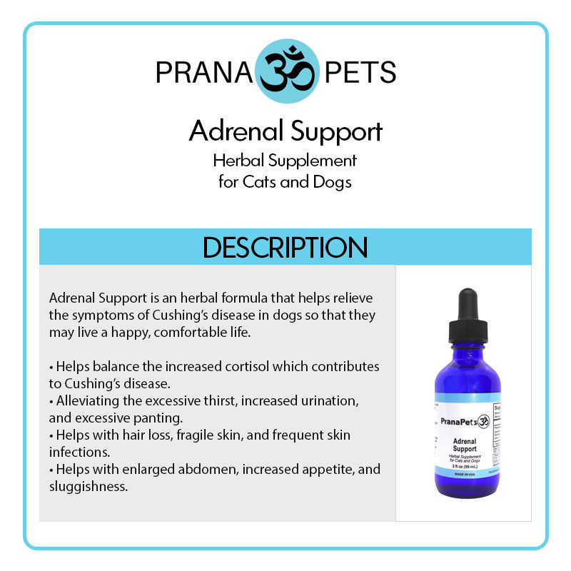 Adrenal Support - Cushing's Treatment for Dogs