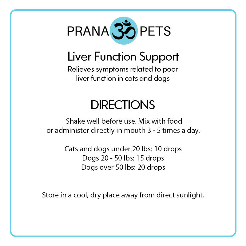 Liver Function Support For Dogs