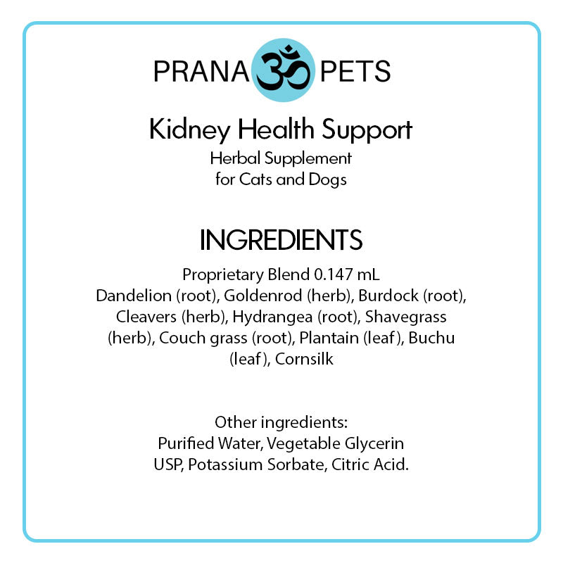 Kidney Health Support - Kidney Treatment for Cats and Dogs