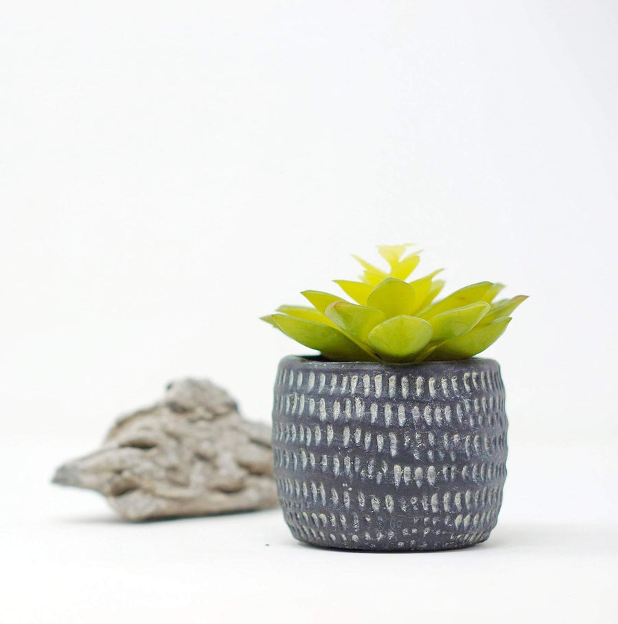 Artificial Succulent - Charcoal Pot Folia House