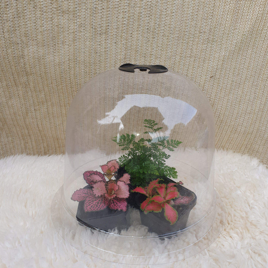 Garden Bell Cloche Folia House