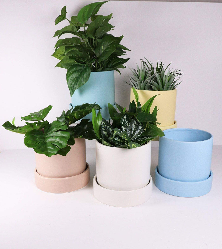 Mynx Planter Blue Folia House
