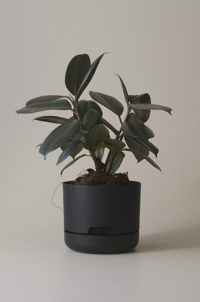 Self-watering Plant Pot Recycled Black Folia House