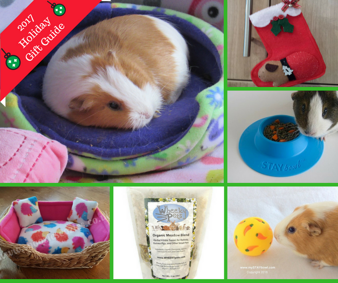 2017 Guinea Pig Christmas Holiday Gift Guide
