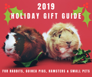 2019 Guinea Pig, Rabbit and Small Pet Christmas Holiday Gift Guide
