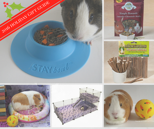 2016 Guinea Pig Christmas Holiday Gift Guide