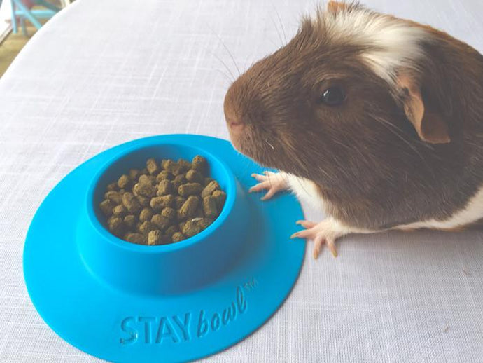 Another UK Blogger Gives STAYbowl™ a Thumbs Up