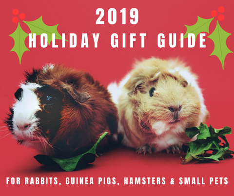 2019 Holiday Gift Guide for Rabbits, Guinea Pigs, Hamsters and Small Pets