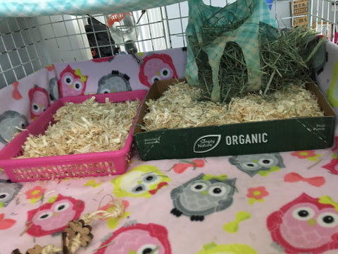 Wondering How To Keep Your Guinea Pig Fleece Bedding Cage Clean And Fr Wheeky Pets We Love Our Customers And Their Pets