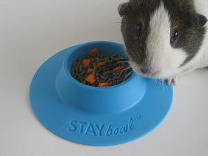 STAYbowlⓇ Tip-Proof Bowl for Guinea Pigs and Small Pets (1-2 guinea pigs) - SIZE SMALL (1/4 cup) - Wheeky Pets, LLC (Green Oak Technology Group)