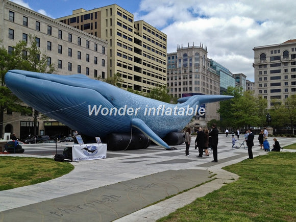 20', 33' or 50'L Inflatable Whale - Inflatable Fun Warehouse