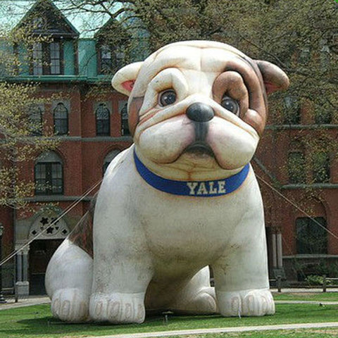 10' Or 13' Inflatable Bulldog - Inflatable Fun Warehouse