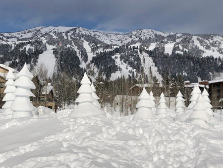 Nexus Nomad Travel Tips: Jackson Hole & Teton Village