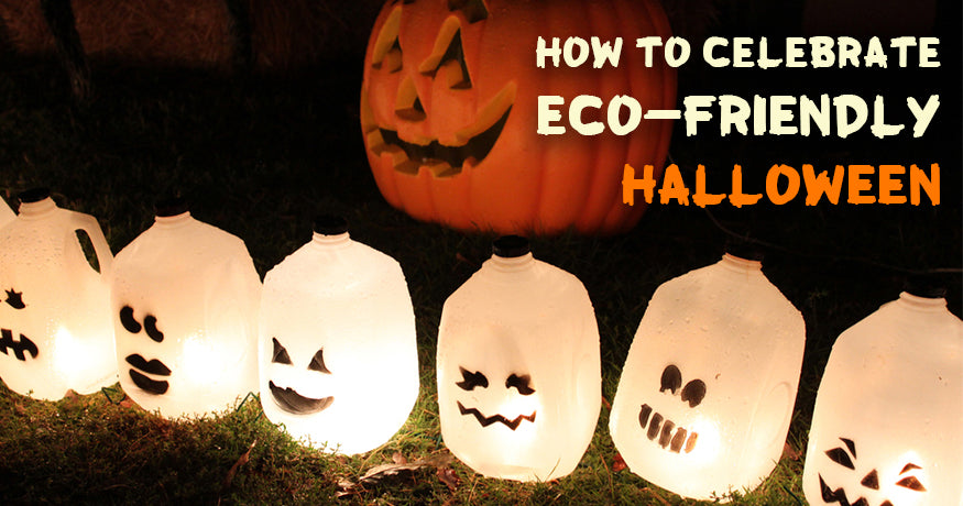 Guide to Celebrate Eco-Friendly Halloween