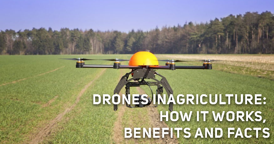 Drones in Agriculture: How it Works, Benefits and Facts