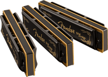 Load image into Gallery viewer, Fender Blues Deville Harmonica (Set of 3)
