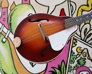 1960s Airline Mandolin