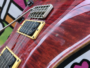 Paul Reed Smith Custom 24