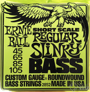 Ernie Ball Regular Slinky Bass Short Scale
