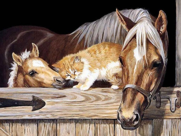 Lovely Horse Canvas Pictures for Living Room, Bedroom,...